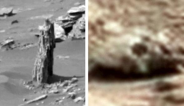Photos from Mars Show A Tree Stump Lookalike