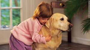 why loving pets is good for your health: People exposed to pets from an early age are less likely to be obese and have fewer allergies