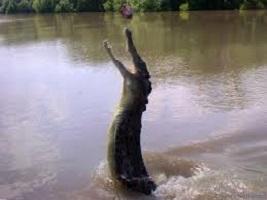 Pastor attempting to walk on water like Jesus Gets Eaten By Crocodiles