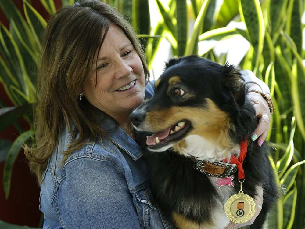Alberta woman rescued by dog in Arizona desert