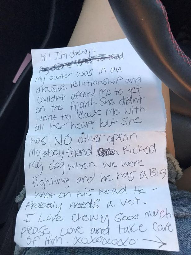 Puppy Left at Airport Bathroom With Heartbreaking Note From Owner