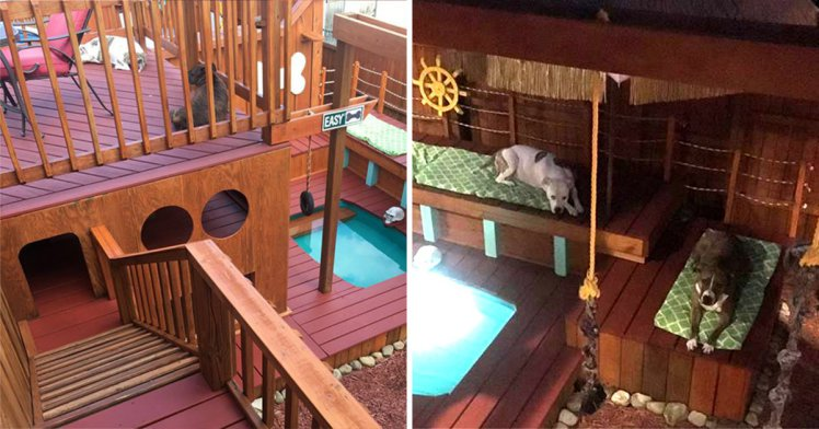 Man builds dogs a Playhouse that's nicer than most New York two-bedroom apartments