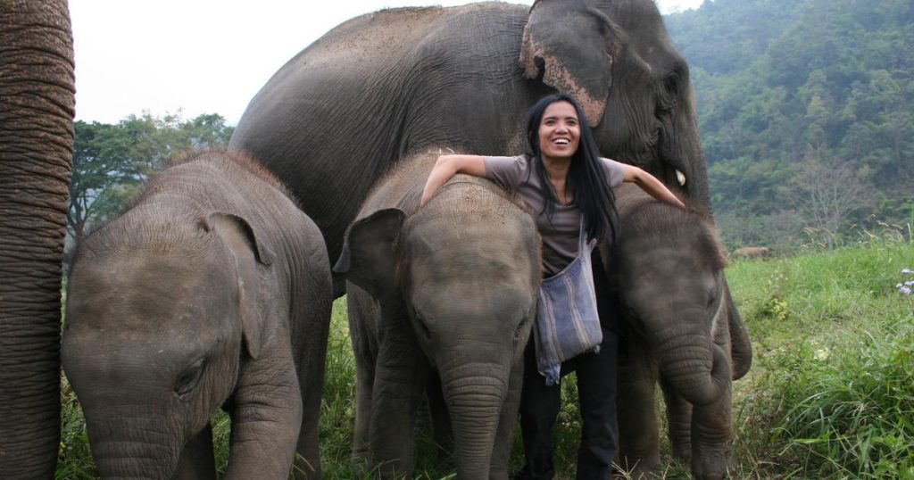 After hearing the screams of working elephants this woman resolved to become Thailand's Elephant Protector