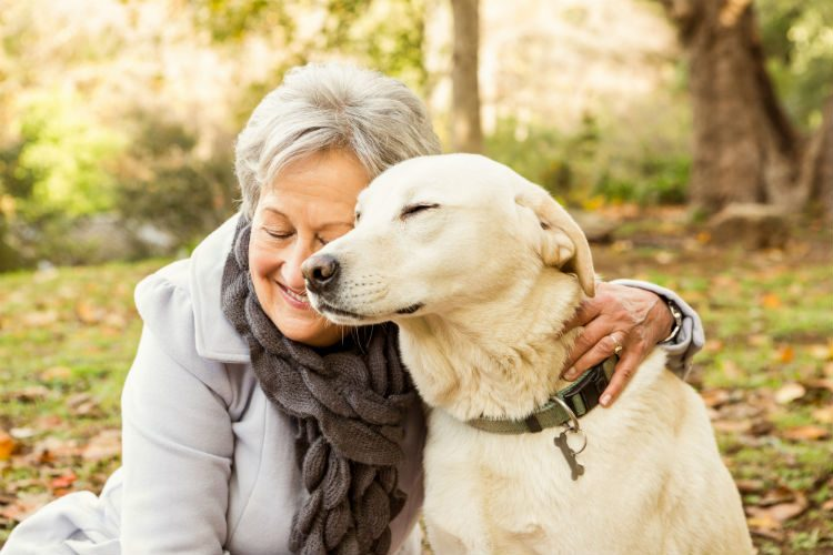 Having A Dog Helps You Live Longer, study finds