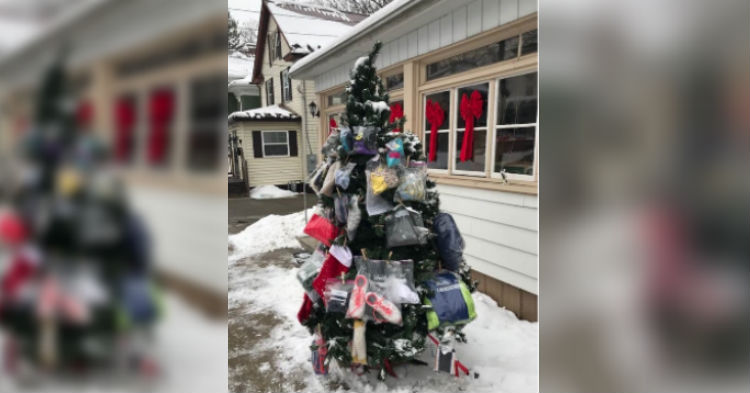 Elderly Pennsylvania man Places Christmas Tree On His Lawn. Photo Goes Viral