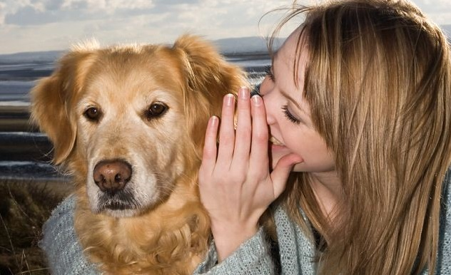 Scientist Reportedly Working On 'Pet Translator' That Could Translate Dog's Barks Into Human Language