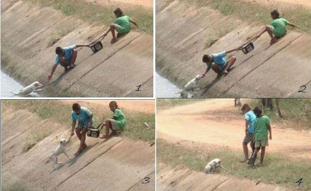 10 Heartwarming Photos That Will Restore Your Faith in Humanity