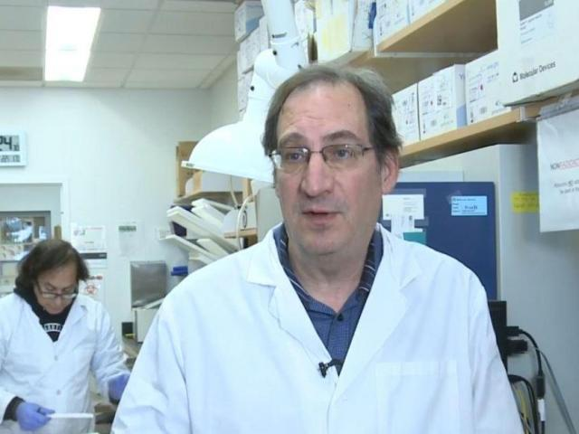 New drug-like compound could treat pain without addiction, UNC scientists say