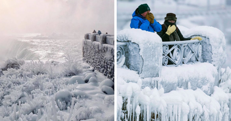 The 'coolest' and most beautiful photos of the winter wonderland