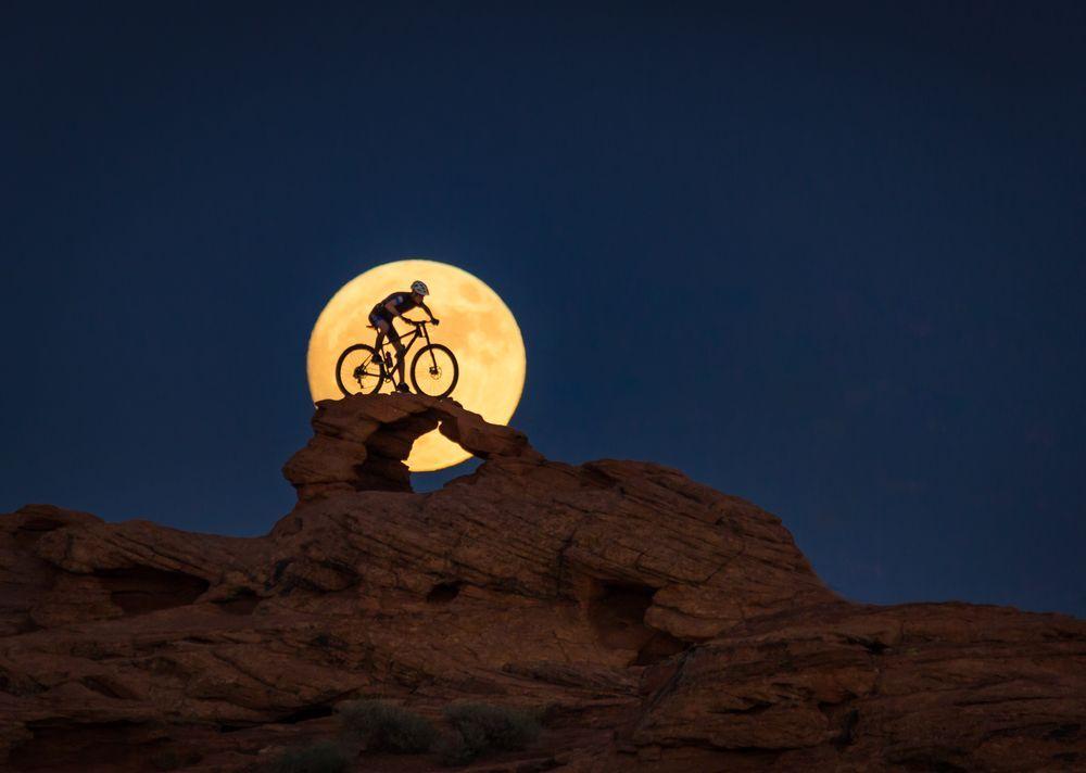 Photo of the Day-'NIGHT RIDER'