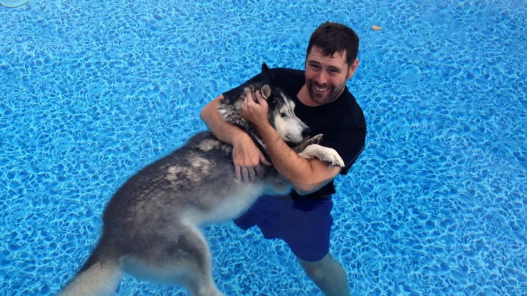Dog's Back Legs Stop Working — His owner decides to try something new to help him
