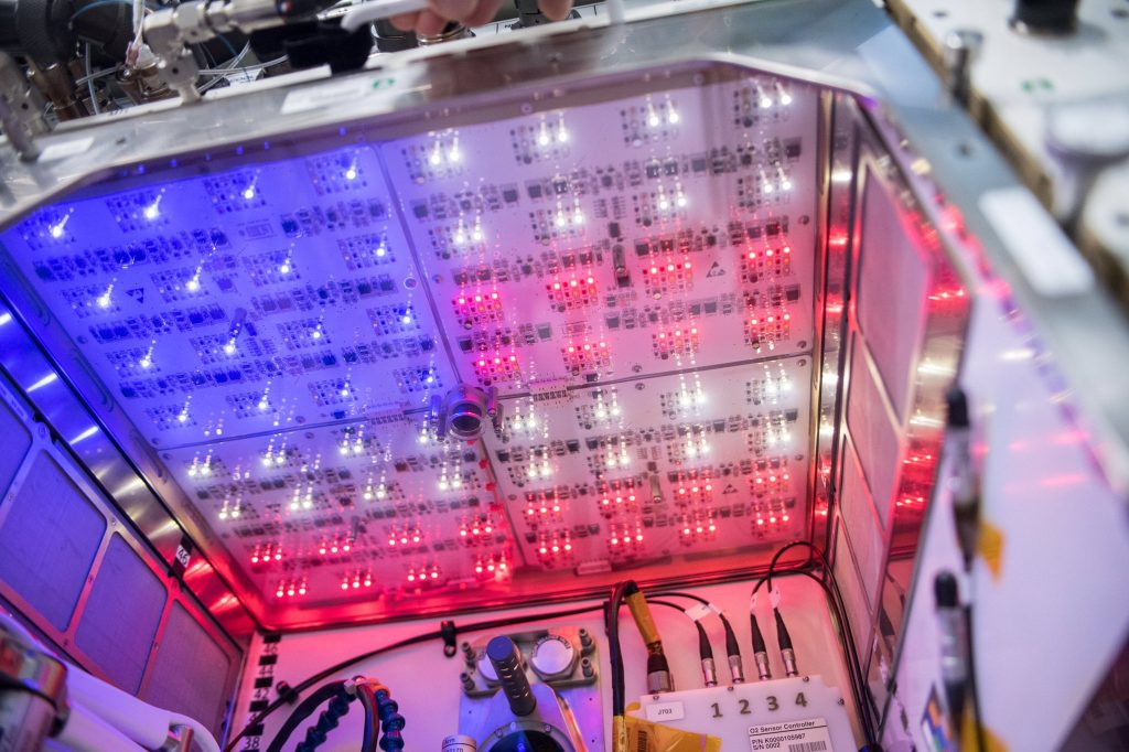 Space Station's Plant Habitat Celebrates the Fourth of July