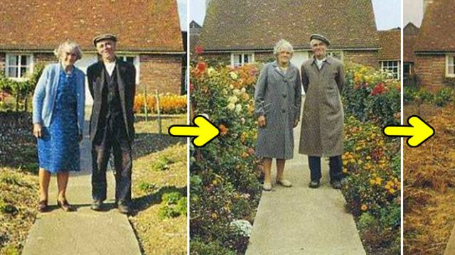 This Elderly Couple Took The Same Photo Every Season. The Last One Is Heartbreaking