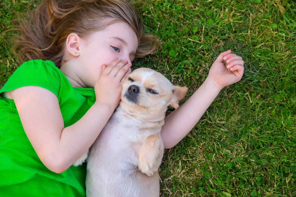 Habit of speaking to your Pet is a Sign of Intelligence, According to a study