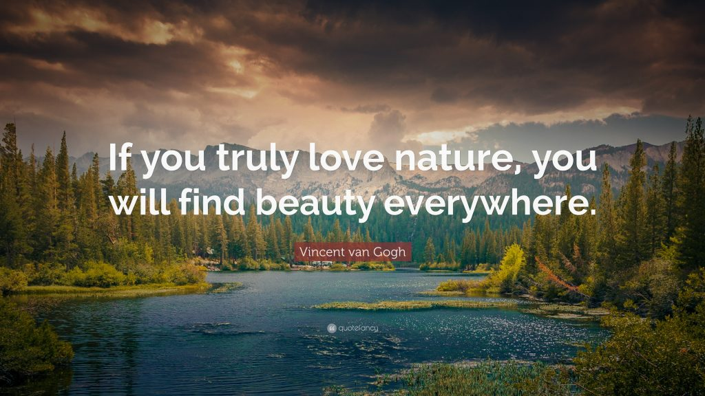 Vincent van Gogh Quotes to Help You Find Beauty in Everything