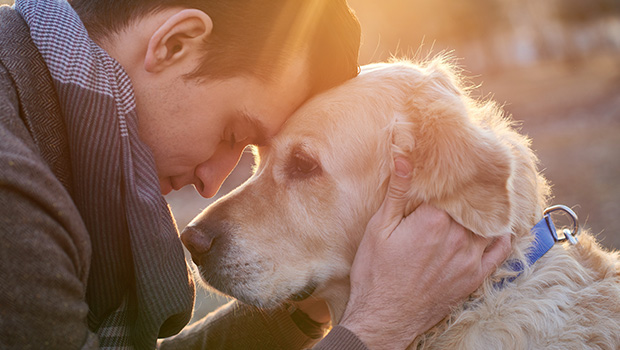 Scientists Confirm Dogs Can Recognize a Bad Person