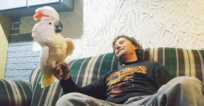 Dad asks if cockatoo loves him — her response will make you burst out laughing