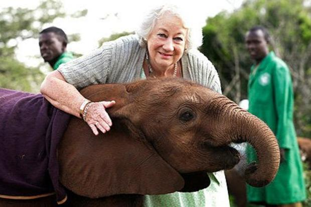 Orphaned Elephants Always Line Up To Hug Woman Who Saved Their Lives