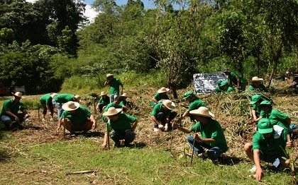 Philippines bill requires all students to plant 10 trees in order to graduate