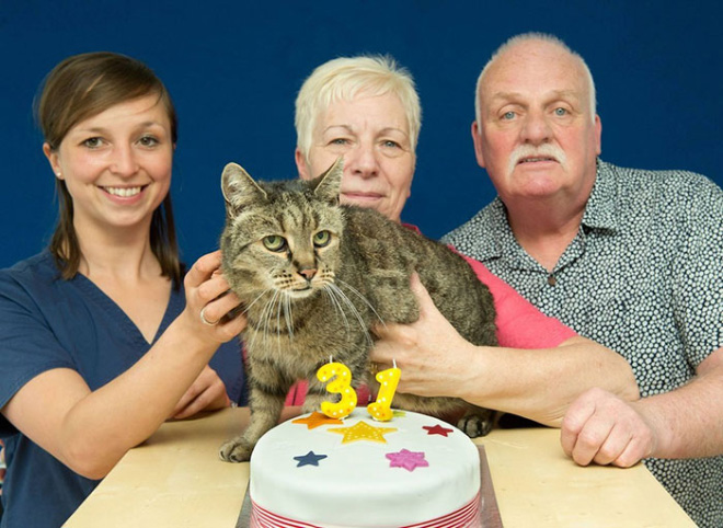 This cheerful kitty is a contender for being the world's oldest cat