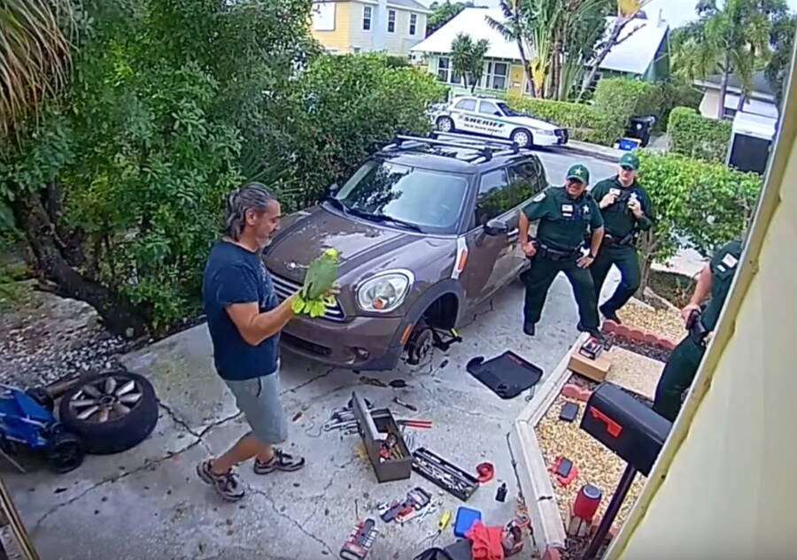 Florida cops were called for a woman screaming 'let me out.' Turns out to be a parrot