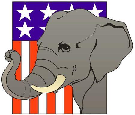 Maybe an elephant!