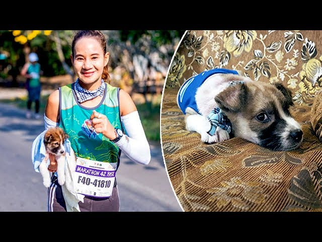 Marathon Runner Goes 19 Miles Carrying A Puppy She Found While Running The Race